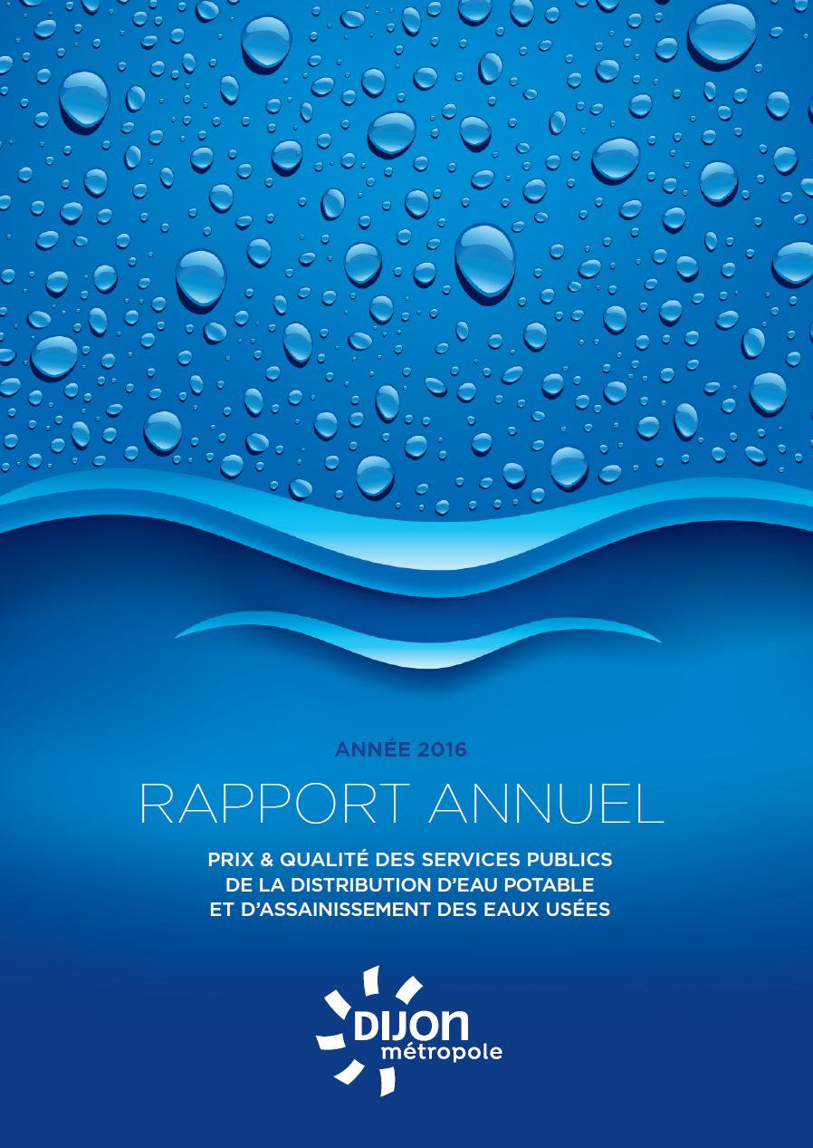 rapport annuel 2016   les rapports